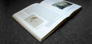 Katalog Olbricht & Behmer